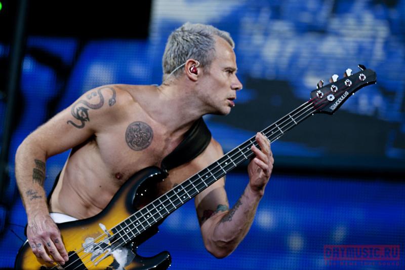 Animal ДжаZ, Vaccines иRed Hot Chili Peppers выступили наTuborg Greenfest 2012в Питере