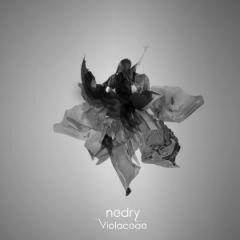 Nedry выпустили новый клип (видео)