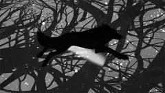Муджус иЗемфира выпустили совместный трек (видео)