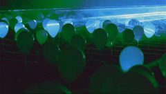 Flaming Lips записали кавер-версию песни Боуи «Space Oddity» (видео)