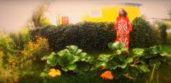 DePhazz— ISing (летнее видео feat. Pat Appleton)